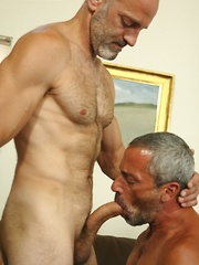 Mature gays have each other anuses